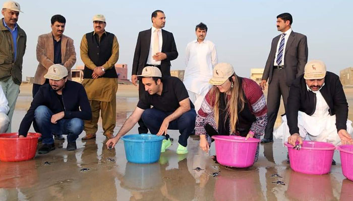 pakistani rich women really love animals, but dont care humans. you can see bhakhtawar bhutto zardari in karachi beach with his brother for starting campaign of conservation nursery of turtles