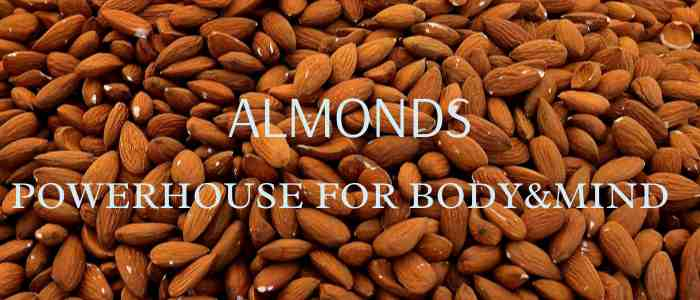 The benefits of almonds are like a powerhouse of body and mind.